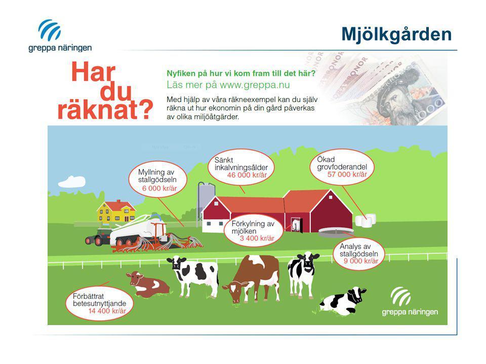 Ökad grovfoderandel Genom att förbättra kvaliteten på ensilaget kan andelen grovfoder i foderstaten öka.