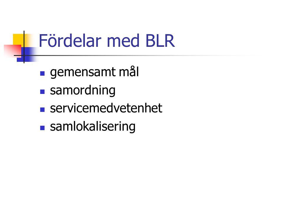 Fördelar med BLR gemensamt mål samordning servicemedvetenhet samlokalisering