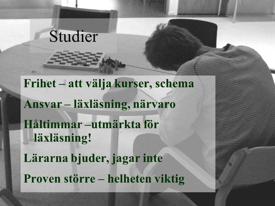 Studier Frihet – att välja kurser, schema Ansvar – läxläsning, närvaro Håltimmar –utmärkta för läxläsning.