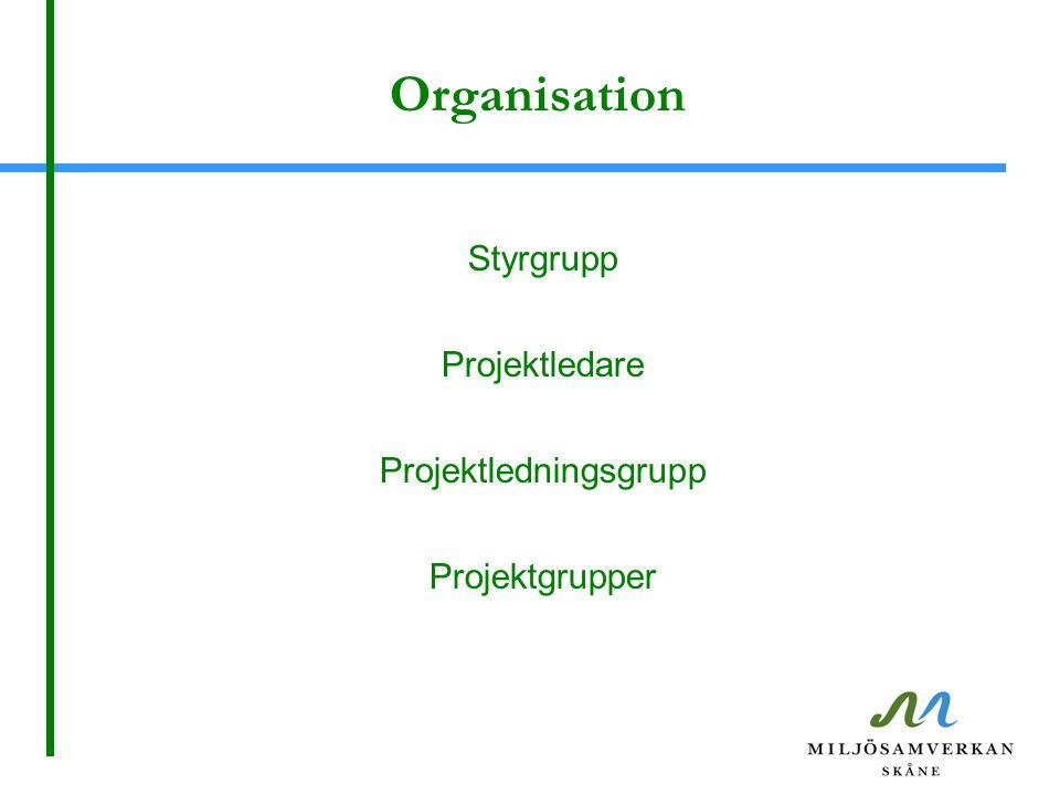 Organisation Styrgrupp Projektledare Projektledningsgrupp Projektgrupper