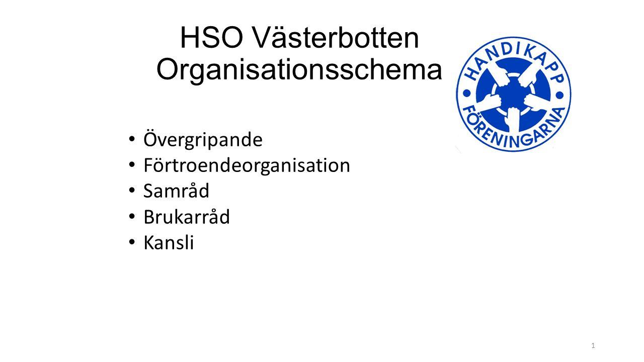 HSO Västerbotten Organisationsschema Övergripande Förtroendeorganisation Samråd Brukarråd Kansli 1
