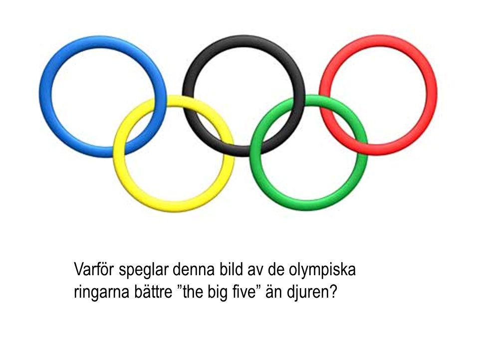 """Varför speglar denna bild av de olympiska ringarna bättre """"the big five"""" än djuren?"""