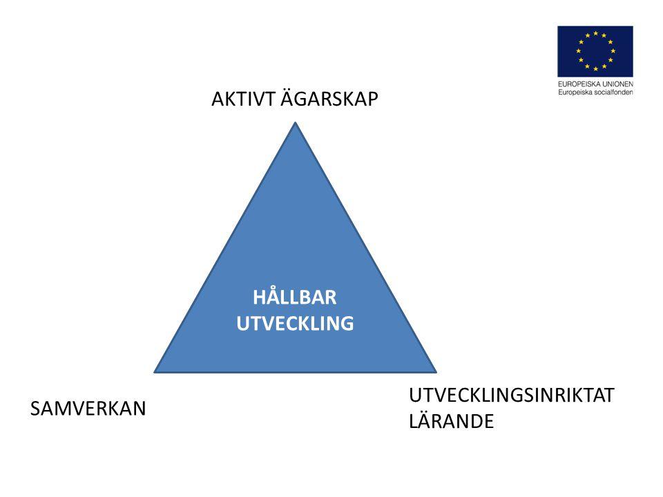 Strukturer Vision Strategier Program Handlingsplaner Ändamålsenlig organisering Processer Samverkan Delaktighet Lärande Implementering EFFEKTMÅL TTHE HEART OF SWEDEN