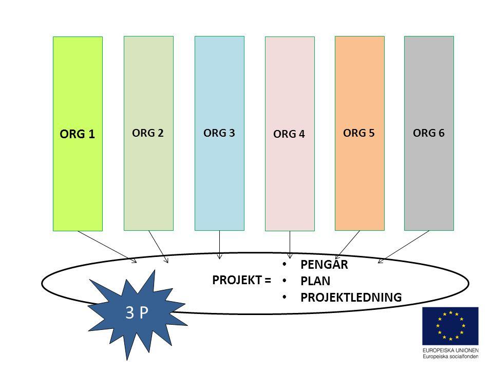 ORG 2 ORG 1 ORG 3 ORG 4 ORG 5ORG 6 3 P PROJEKT = PENGAR PLAN PROJEKTLEDNING