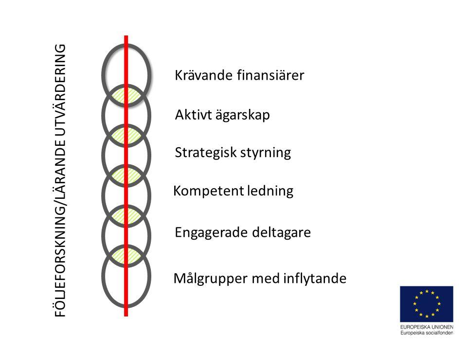 Aktivt ägarskap Strategisk styrning Kompetent ledning Engagerade deltagare Målgrupper med inflytande Krävande finansiärer FÖLJEFORSKNING/LÄRANDE UTVÄRDERING