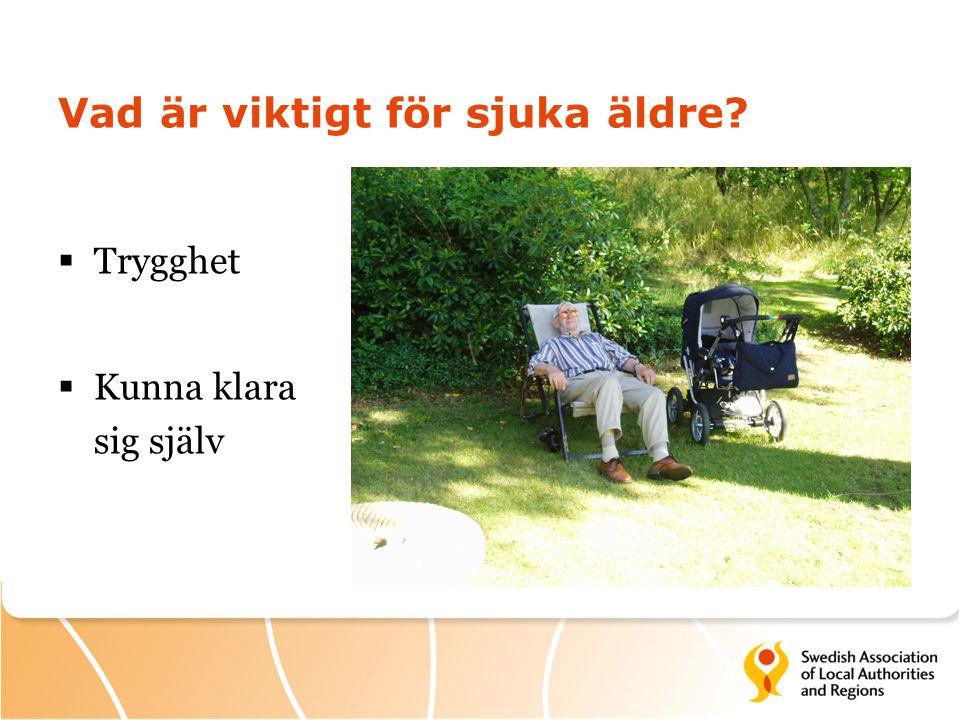 Vad är viktigt för sjuka äldre?  Trygghet  Kunna klara sig själv