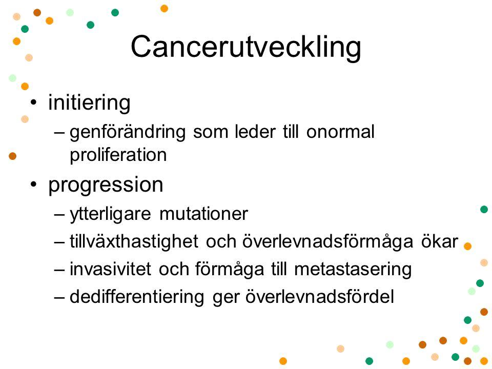 Cancerutveckling initiering –genförändring som leder till onormal proliferation progression –ytterligare mutationer –tillväxthastighet och överlevnads