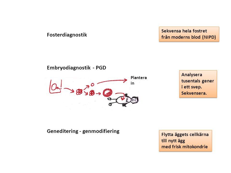 Fosterdiagnostik Embryodiagnostik - PGD Plantera in Sekvensa hela fostret från moderns blod (NIPD) Sekvensa hela fostret från moderns blod (NIPD) Anal