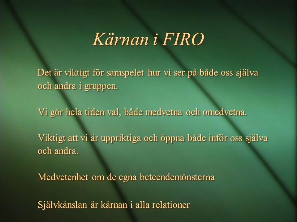 Kärnan i FIRO Det är viktigt för samspelet hur vi ser på både oss själva och andra i gruppen. Vi gör hela tiden val, både medvetna och omedvetna. Vikt