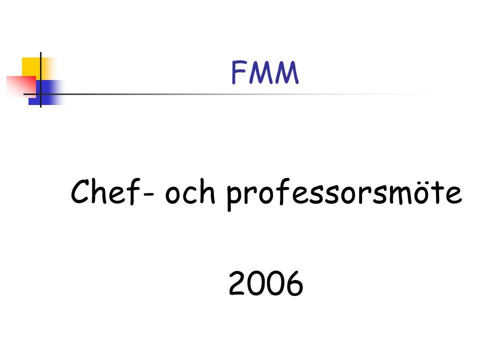 FMM Chef- och professorsmöte 2006