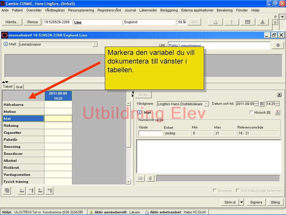 Markera den variabel du vill dokumentera till vänster i tabellen.