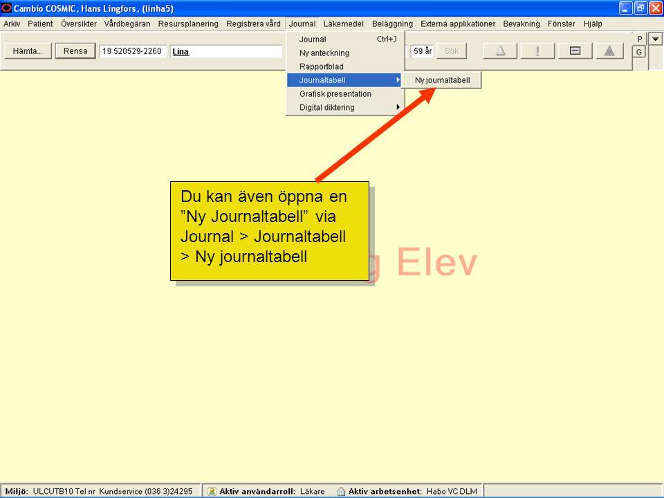 Du kan även öppna en Ny Journaltabell via Journal > Journaltabell > Ny journaltabell