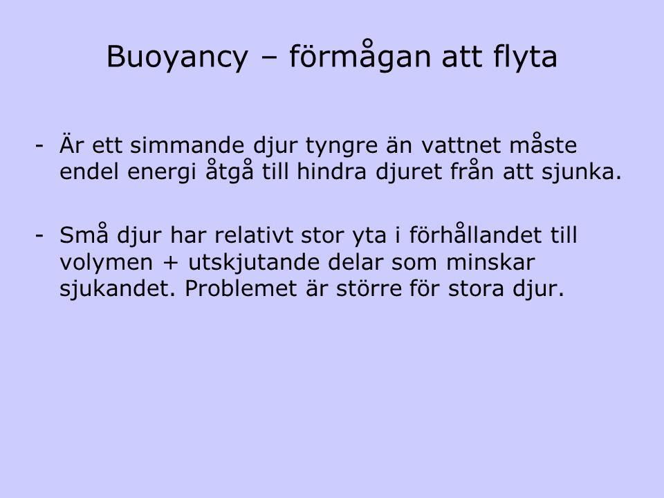 Buoyancy – förmågan att flyta -Är ett simmande djur tyngre än vattnet måste endel energi åtgå till hindra djuret från att sjunka. -Små djur har relati
