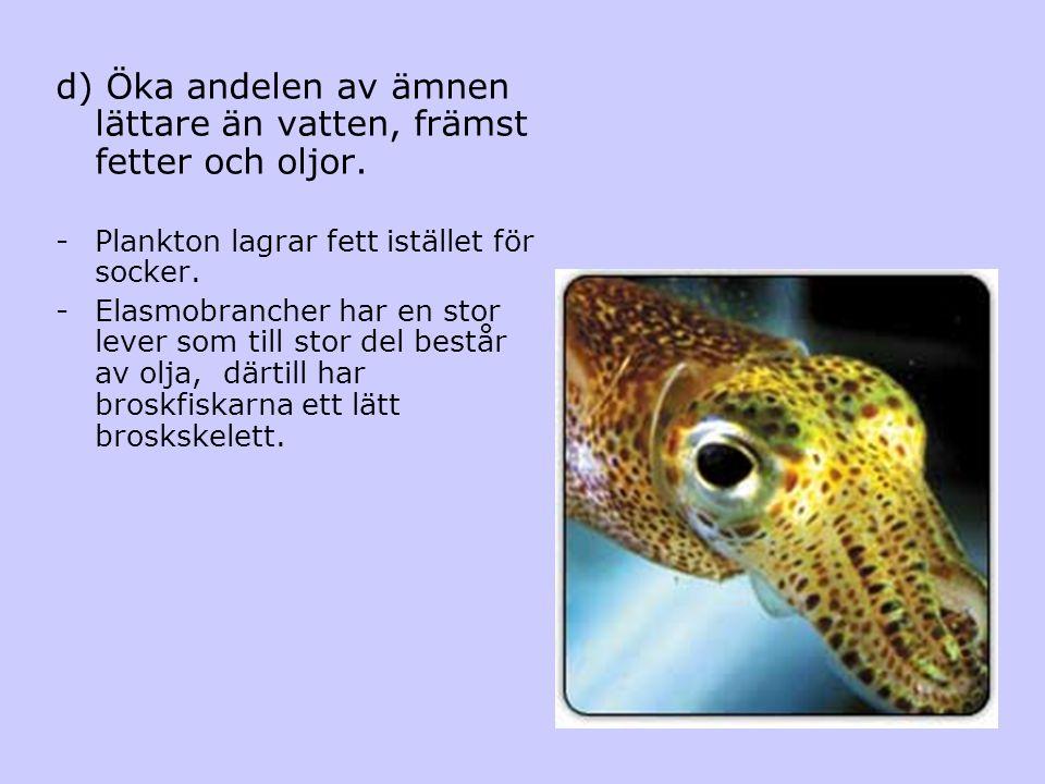 d) Öka andelen av ämnen lättare än vatten, främst fetter och oljor. -Plankton lagrar fett istället för socker. -Elasmobrancher har en stor lever som t