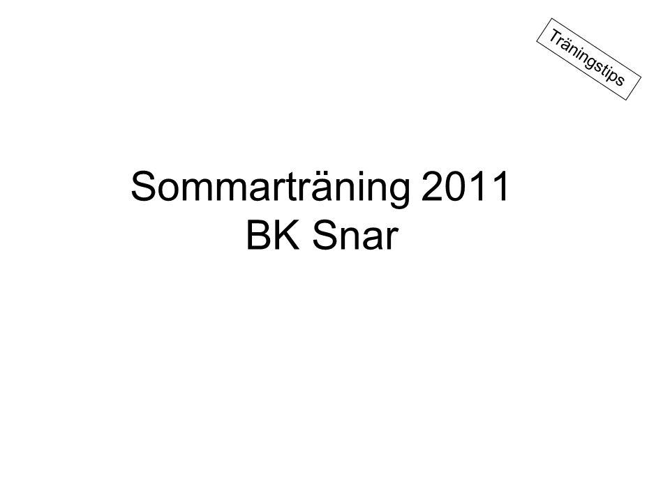 Sommarträning 2011 BK Snar Träningstips