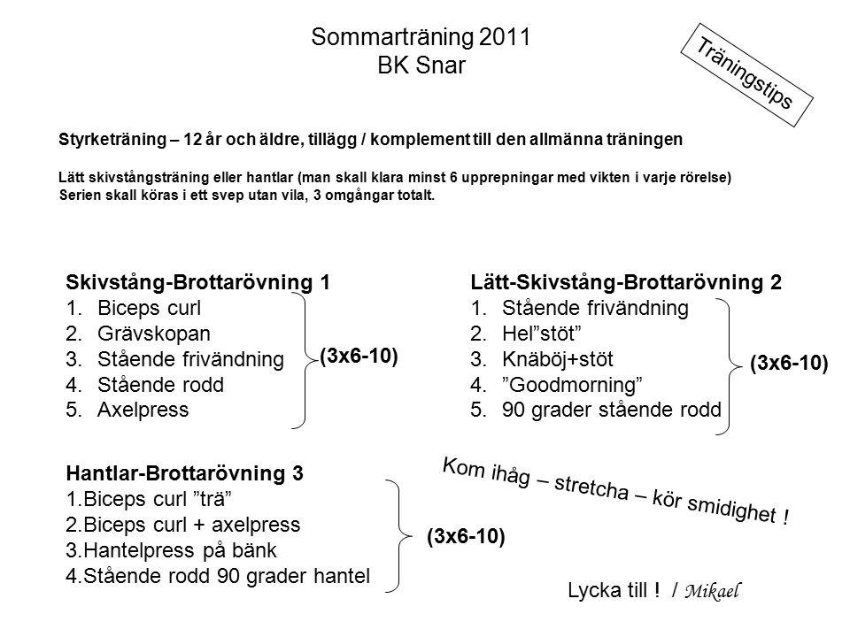 Sommarträning 2011 BK Snar Styrketräning – 12 år och äldre, tillägg / komplement till den allmänna träningen Lätt skivstångsträning eller hantlar (man