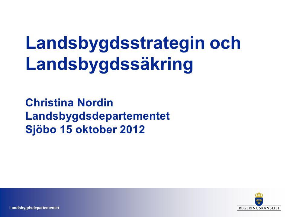 Landsbygdsdepartementet Landsbygdsstrategin mars 2009 - tre delar En strategidel Fem strategiska områden (Som i arbetet motsvarades av arbetsgrupper med representanter från alla departement.) Organisatoriska åtgärder och aktiviteter på nationell nivå