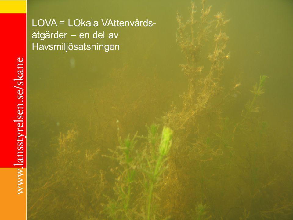 LOVA LOVA = LO kala VA ttenvårdsåtgärder – en del av Havsmiljösatsningen LOVA = LOkala VAttenvårds- åtgärder – en del av Havsmiljösatsningen