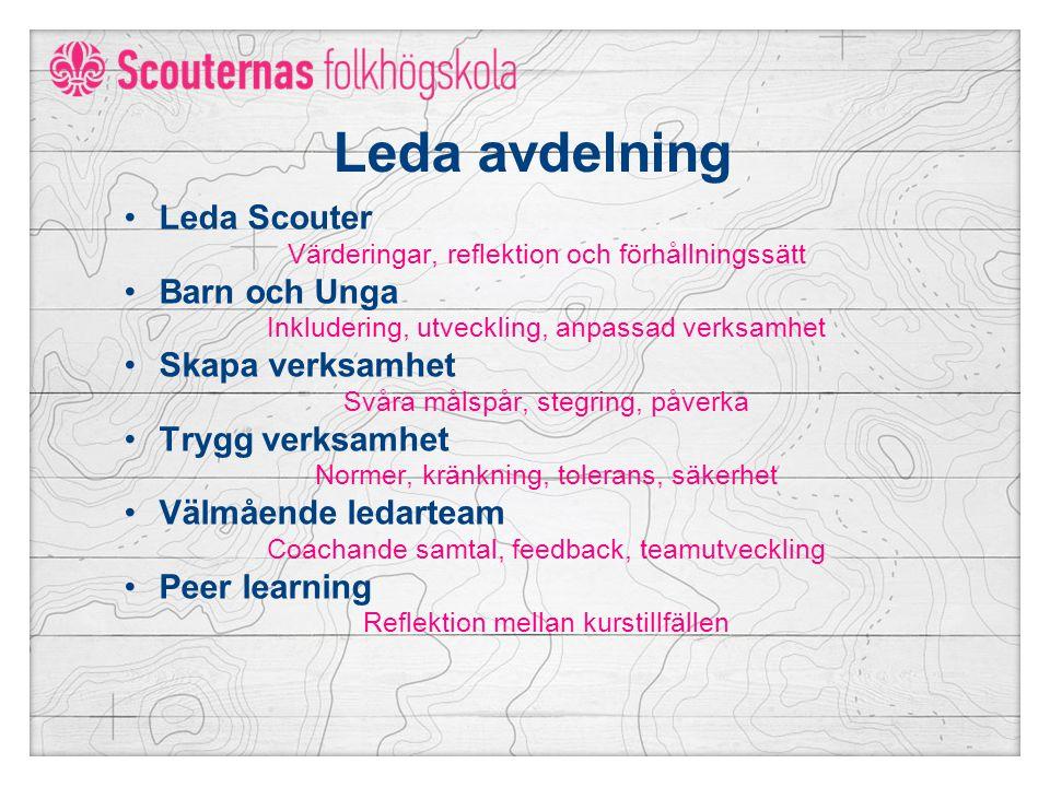 Leda avdelning Leda Scouter Värderingar, reflektion och förhållningssätt Barn och Unga Inkludering, utveckling, anpassad verksamhet Skapa verksamhet Svåra målspår, stegring, påverka Trygg verksamhet Normer, kränkning, tolerans, säkerhet Välmående ledarteam Coachande samtal, feedback, teamutveckling Peer learning Reflektion mellan kurstillfällen