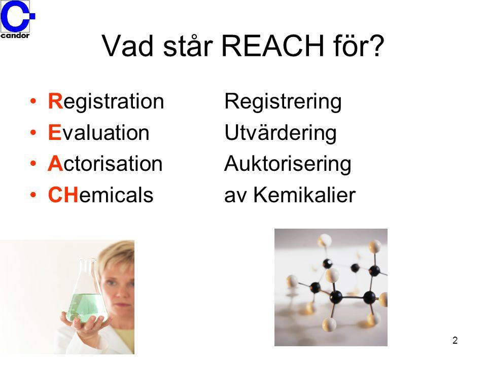3 Varför REACH.