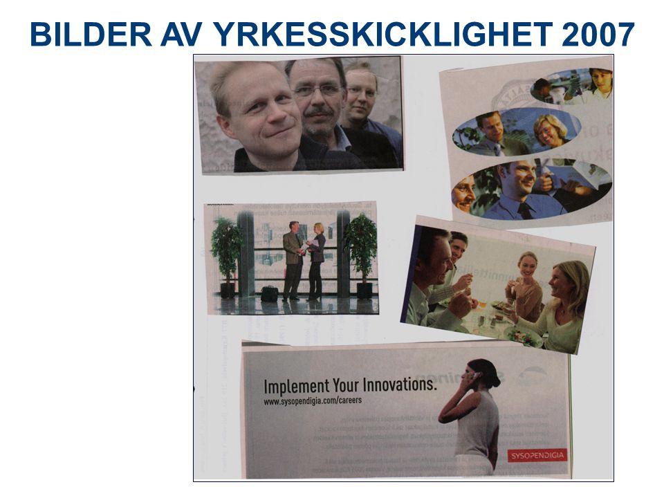 BILDER AV YRKESSKICKLIGHET 2007