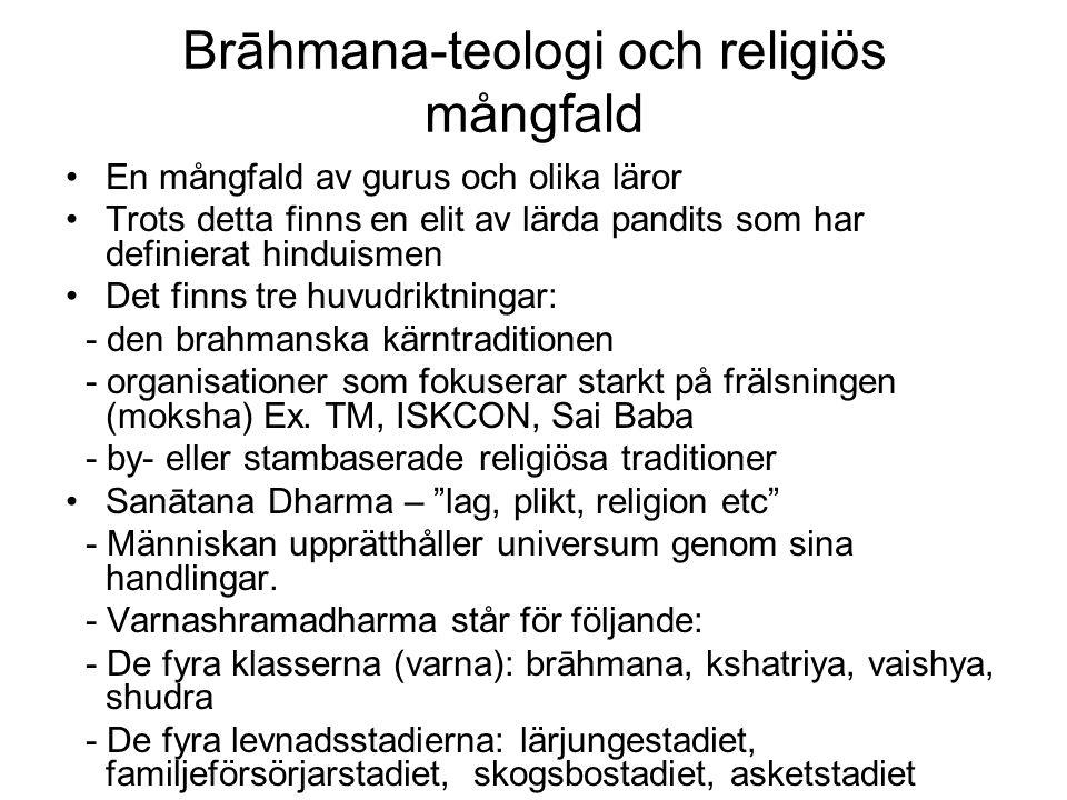 Brāhmana-teologi och religiös mångfald En mångfald av gurus och olika läror Trots detta finns en elit av lärda pandits som har definierat hinduismen Det finns tre huvudriktningar: - den brahmanska kärntraditionen - organisationer som fokuserar starkt på frälsningen (moksha) Ex.