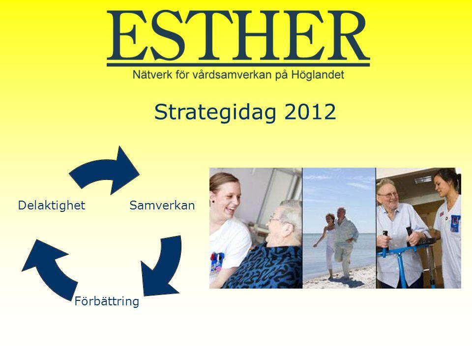 Samverkan Förbättring Delaktighet Strategidag 2012