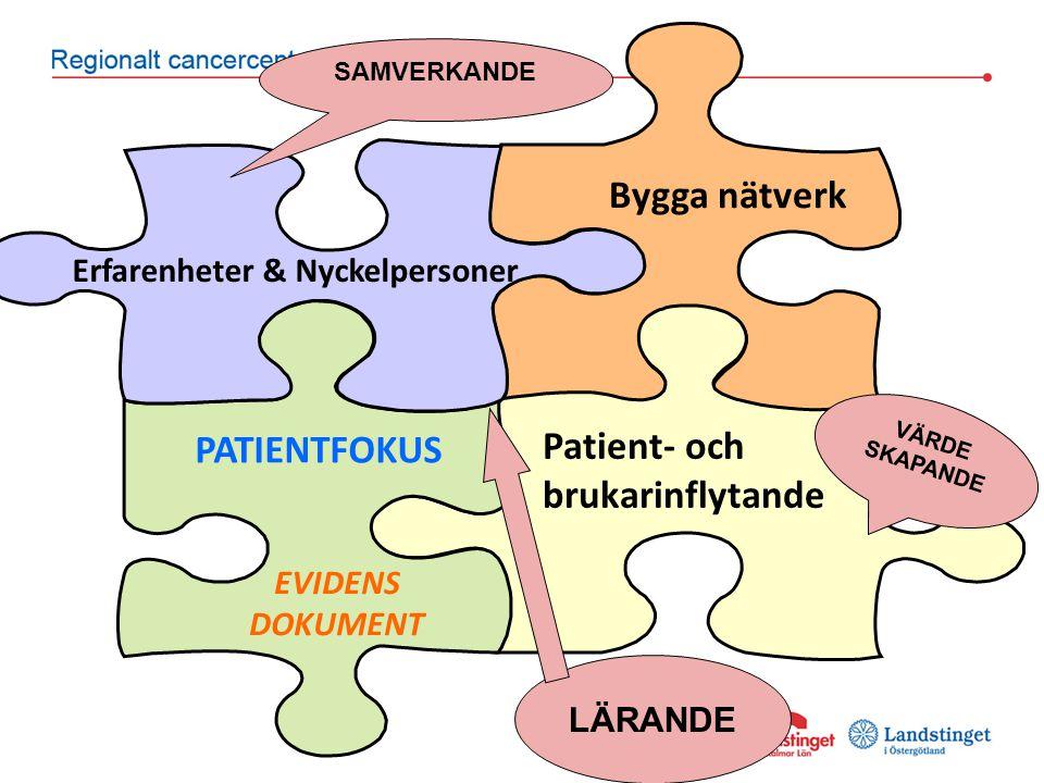 Patient- och brukarinflytande PATIENTFOKUS Erfarenheter & Nyckelpersoner Bygga nätverk EVIDENS DOKUMENT VÄRDE SKAPANDE SAMVERKANDE LÄRANDE