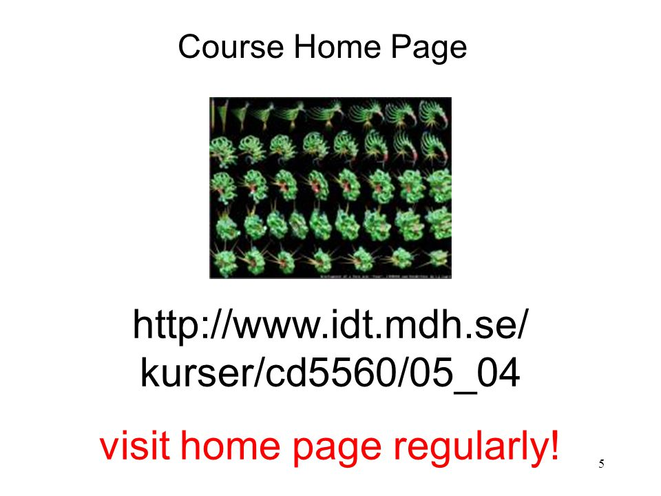 5 http://www.idt.mdh.se/ kurser/cd5560/05_04 visit home page regularly! Course Home Page