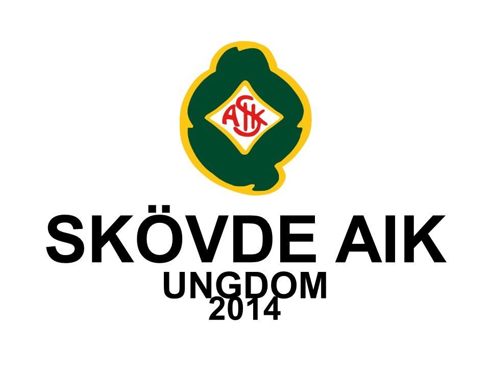 SKÖVDE AIK UNGDOM 2014