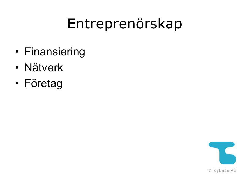Entreprenörskap Finansiering Nätverk Företag