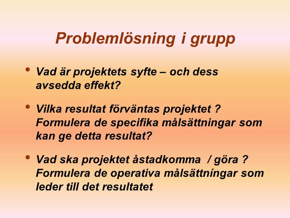 ©Kalliopi Associates Ltd 2008 Specificera målsättningar Operativa –Att organisera seminarier –Att hjälpa företag att se över sina produkter –Att hjälp