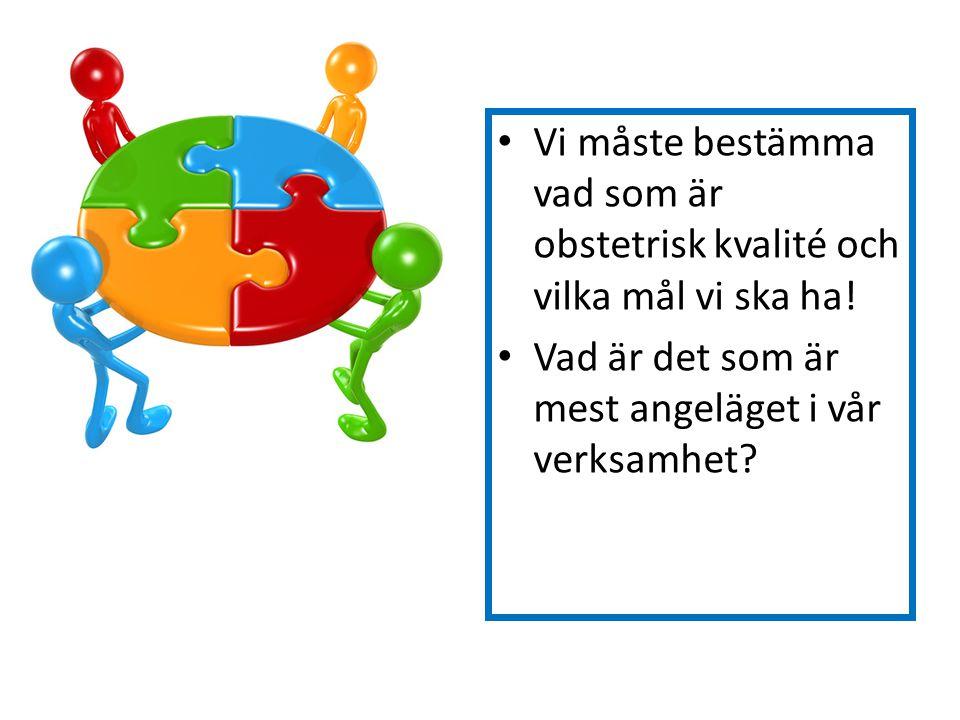 Vi måste bestämma vad som är obstetrisk kvalité och vilka mål vi ska ha! Vad är det som är mest angeläget i vår verksamhet?