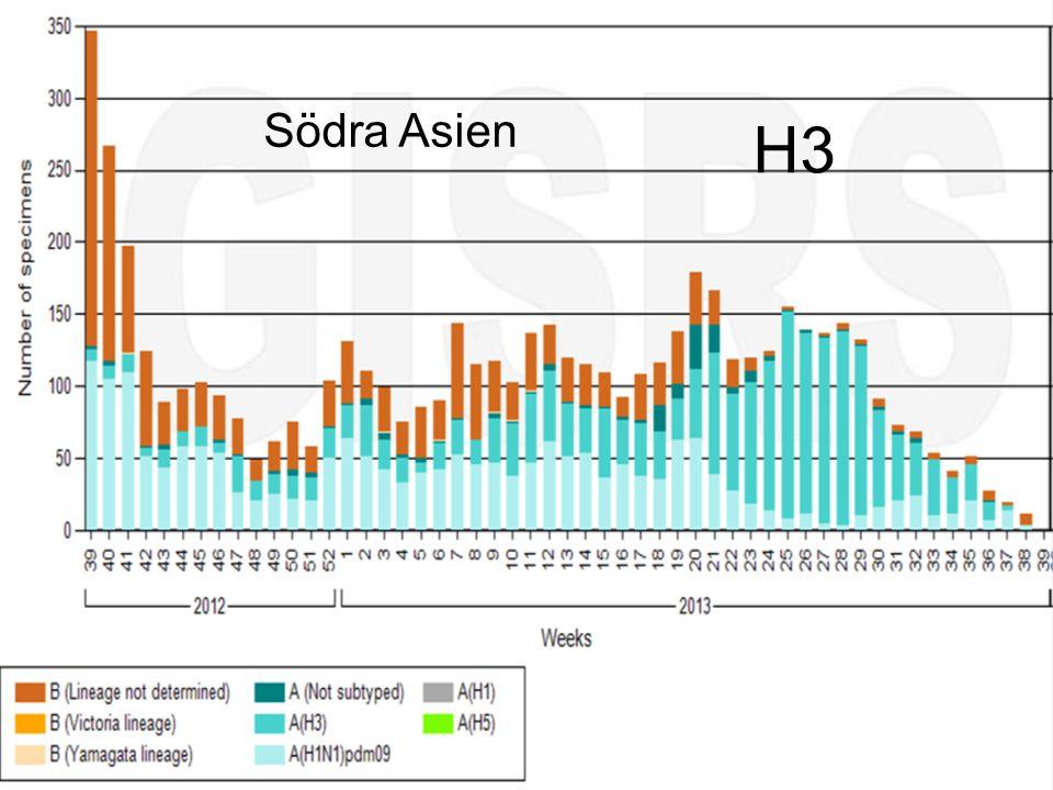 Smittskyddsenheten Södra Asien H3