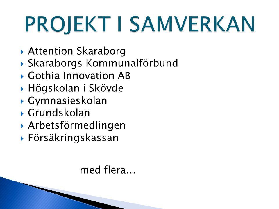  Attention Skaraborg  Skaraborgs Kommunalförbund  Gothia Innovation AB  Högskolan i Skövde  Gymnasieskolan  Grundskolan  Arbetsförmedlingen  F