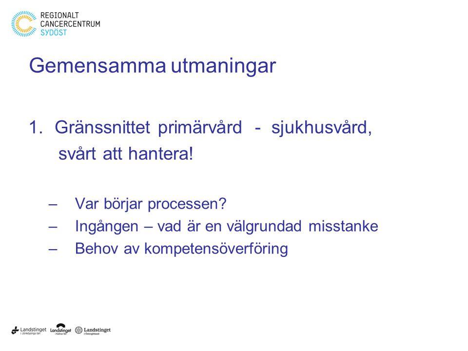 Gemensamma utmaningar 1.Gränssnittet primärvård - sjukhusvård, svårt att hantera.