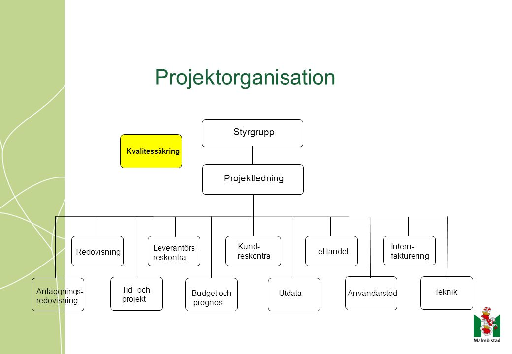 Projektorganisation Styrgrupp Kvalitessäkring Projektledning Tid- och projekt Budget och prognos Anläggnings- redovisning Utdata Användarstöd Redovisn