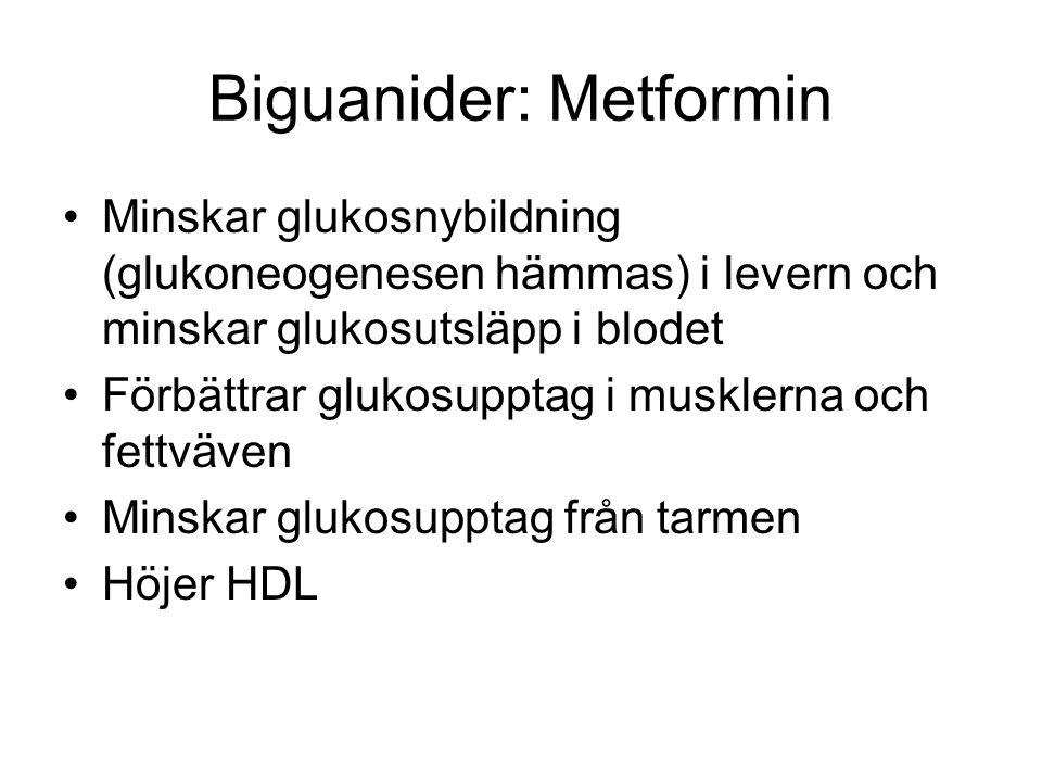 Biguanider: Metformin Minskar glukosnybildning (glukoneogenesen hämmas) i levern och minskar glukosutsläpp i blodet Förbättrar glukosupptag i musklerna och fettväven Minskar glukosupptag från tarmen Höjer HDL