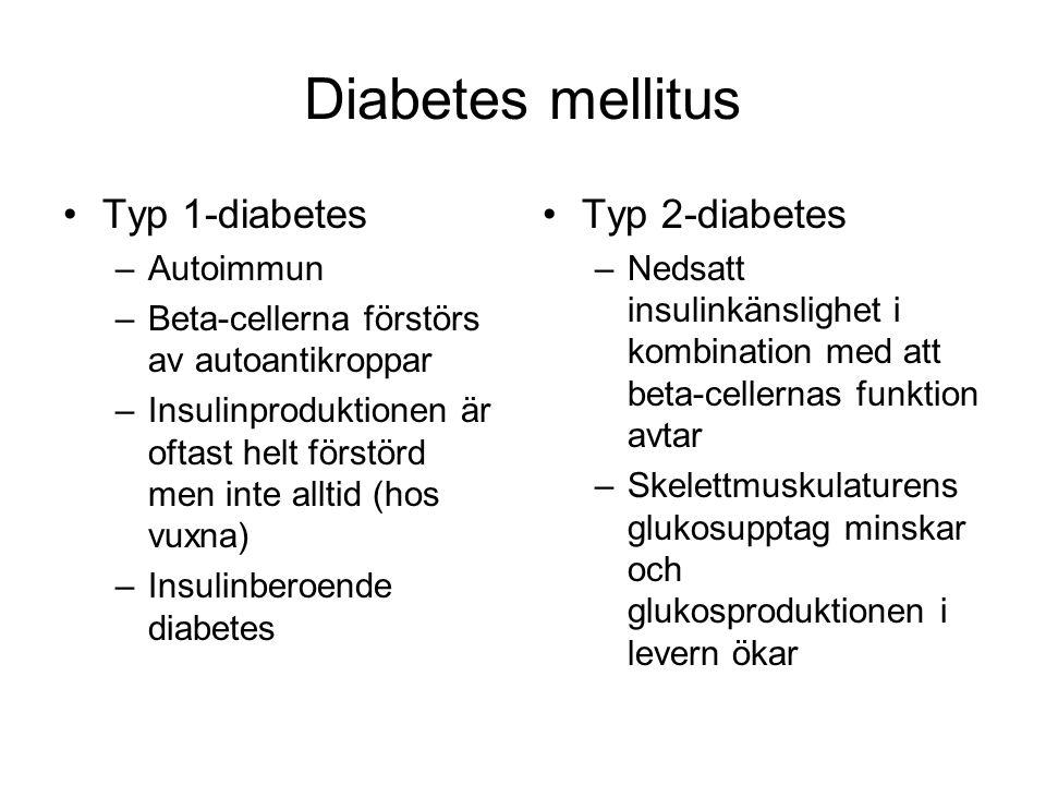 Diabetes mellitus Typ 1-diabetes –Autoimmun –Beta-cellerna förstörs av autoantikroppar –Insulinproduktionen är oftast helt förstörd men inte alltid (hos vuxna) –Insulinberoende diabetes Typ 2-diabetes –Nedsatt insulinkänslighet i kombination med att beta-cellernas funktion avtar –Skelettmuskulaturens glukosupptag minskar och glukosproduktionen i levern ökar