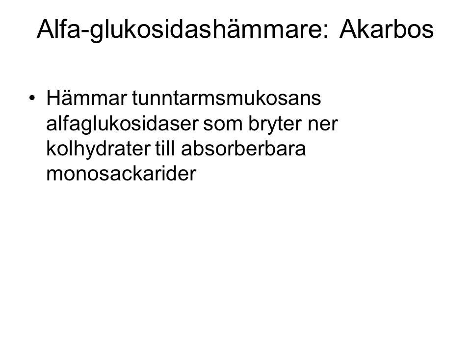 Alfa-glukosidashämmare: Akarbos Hämmar tunntarmsmukosans alfaglukosidaser som bryter ner kolhydrater till absorberbara monosackarider
