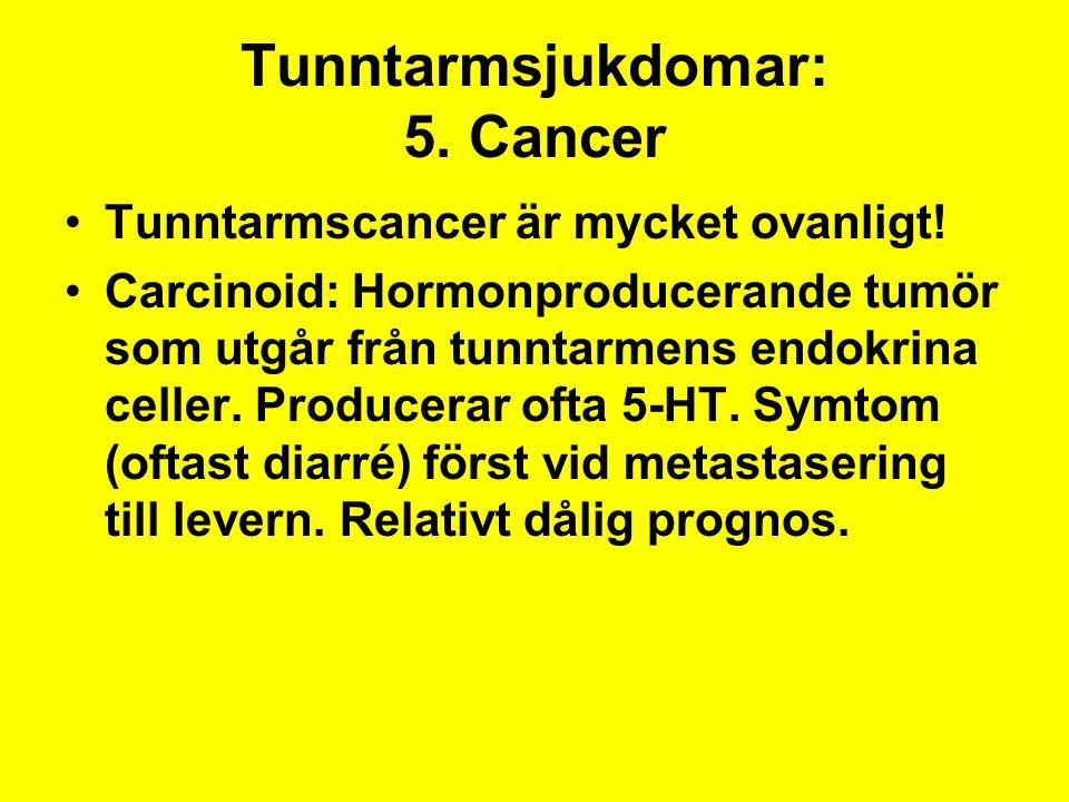 Tunntarmsjukdomar: 5. Cancer Tunntarmscancer är mycket ovanligt! Carcinoid: Hormonproducerande tumör som utgår från tunntarmens endokrina celler. Prod