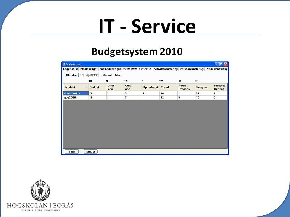 c IT - Service Budgetsystem 2010
