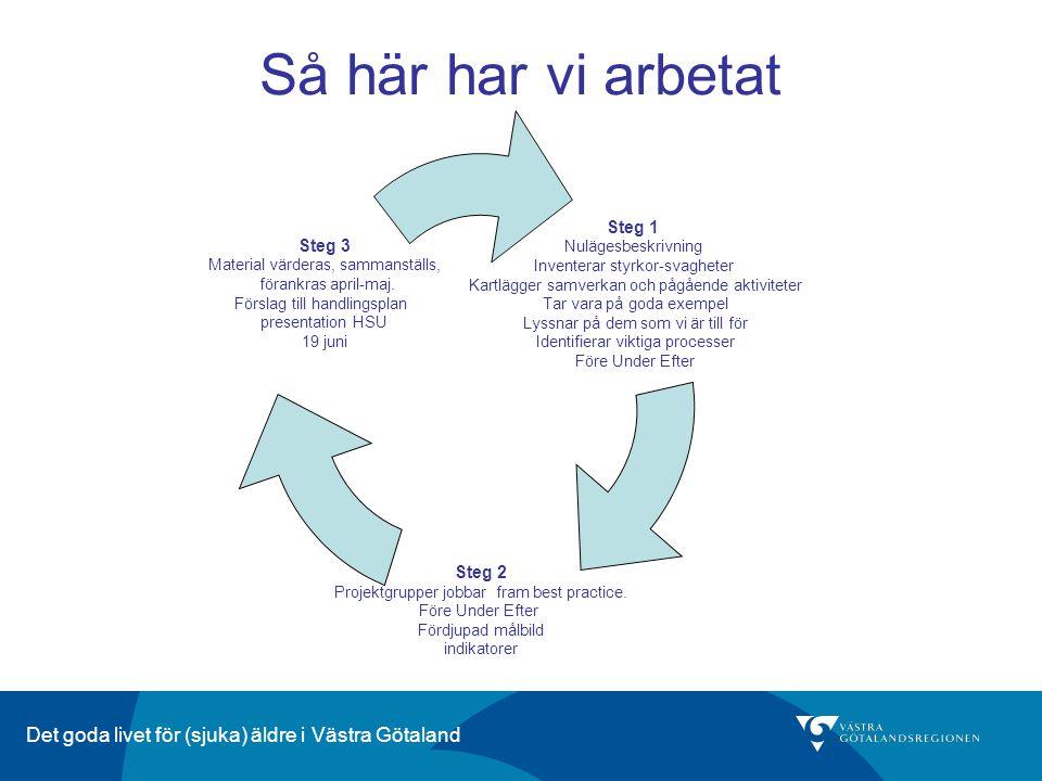 Det goda livet för (sjuka) äldre i Västra Götaland Så här har vi arbetat s Steg 1 Nulägesbeskrivning Inventerar styrkor-svagheter Kartlägger samverkan