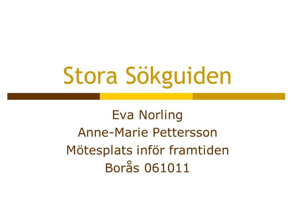 Stora Sökguiden Eva Norling Anne-Marie Pettersson Mötesplats inför framtiden Borås 061011