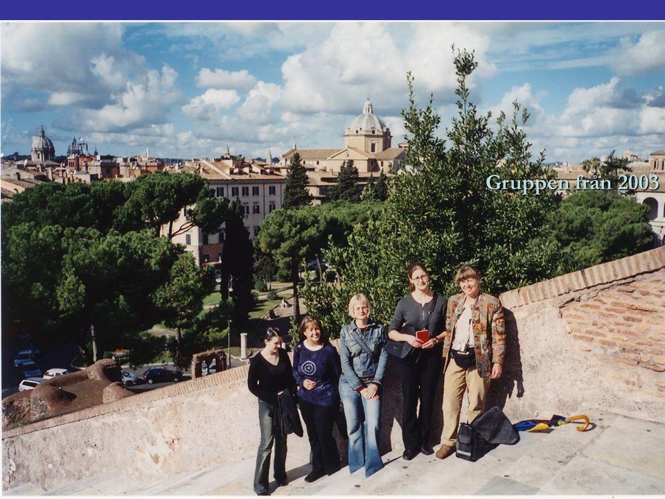 Gruppen från 2003