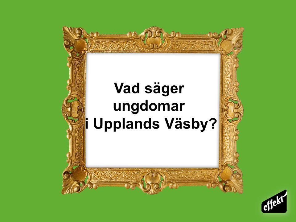 Vad säger ungdomar i Upplands Väsby