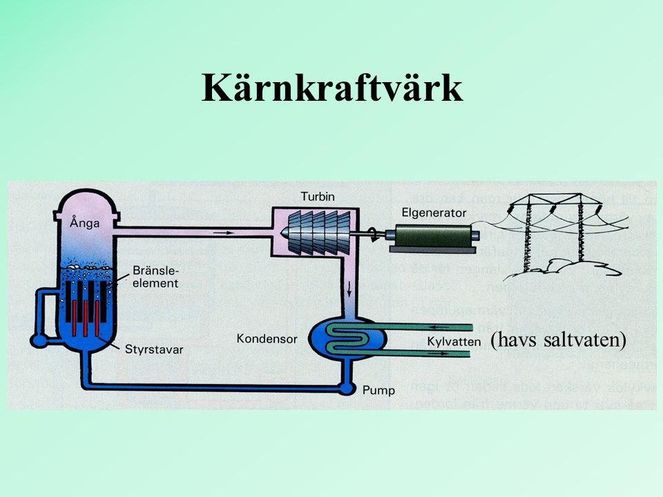 Kärnkraftvärk (havs saltvaten)