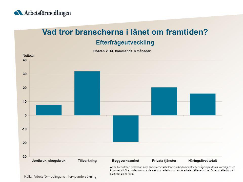 Vad tror branscherna i länet om framtiden. Efterfrågeutveckling Anm.