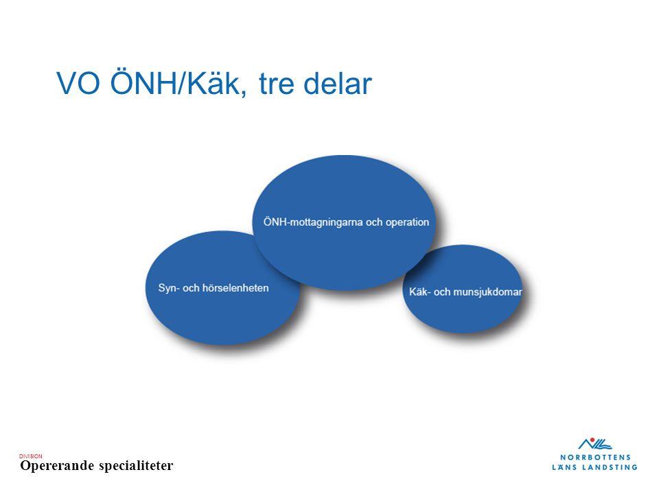 DIVISION Opererande specialiteter VO ÖNH/Käk, tre delar
