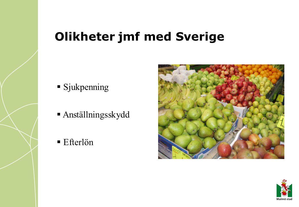 Olikheter jmf med Sverige  Sjukpenning  Anställningsskydd  Efterlön